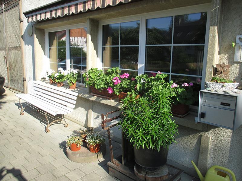 fenster neubau und renovationen maugweiler gmbh